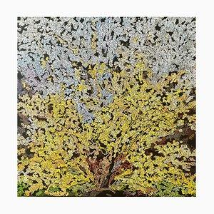 Yellow Tree, 2020