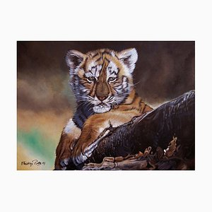 Little One, the Baby Tiger, 2017