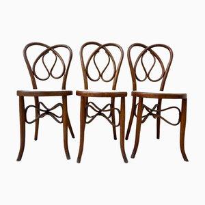 Bugholz Stühle, 19. Jahrhundert, 6er Set
