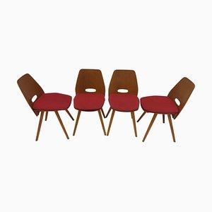 Mid-Century Dining Chairs from Tatra Pravenec, 1960s, Set of 4