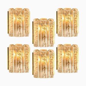 Große Anzahl an strukturierten Wandleuchten aus geblasenem Glas & Messing von Doria Leuchten, 1960er