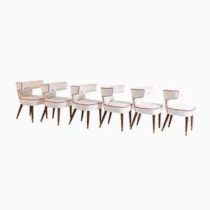 Mod. 538 Chairs by Gio Ponti & Nino Zoncada for Ship Giulio Cesare, 1950s, Set of 6