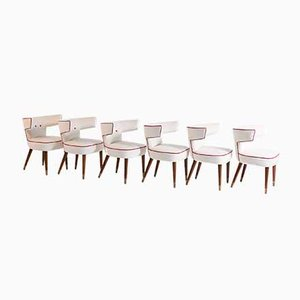 Mod. 538 Stühle von Gio Ponti & Nino Zoncada für Ship Giulio Cesare, 1950er, 6er Set