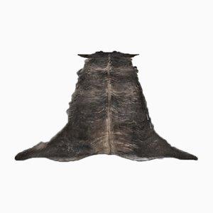 Langer gestreckter Rindsleder Teppich von Mineheart