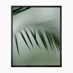 Palmen Etch 8, Gerahmte Bedruckte Leinwand von Mineheart