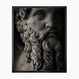 Statuesque 10, Framed Medium Printed Canvas from Mineheart