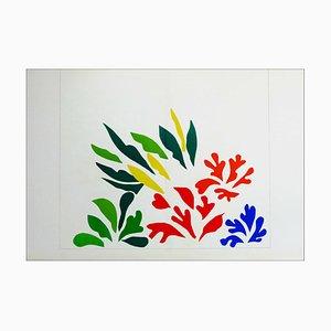 Litografia di Henri Matisse, Acanthes, 1958