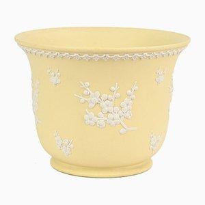 Gelber Jasperware Blumentopf von Wedgwood
