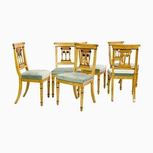 Chaises de Salon Charles X en Érable Moucheté, Set de 6