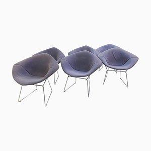 Diamond Chair by Harry Bertoia for Knoll International