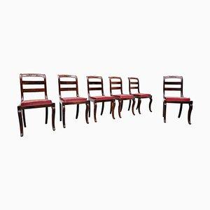 Charles X Mahagoni Stühle, 6er Set