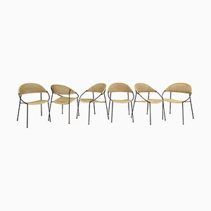 Model DU41 Chairs by Gastone Rinaldi for Rima, Italy, 1956, Set of 6