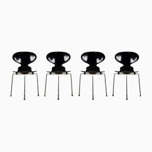 Sedie da pranzo Ant di Arne Jacobsen per Fritz Hansen, anni '50, set di 4