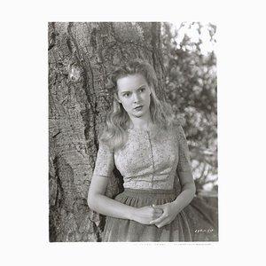 Janet Leigh Archivdruck in Weiß von Bettmann