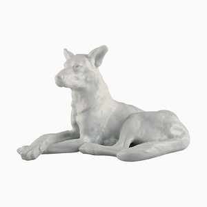 Large Herend Blanc De Chine Figure of German Shepherd, 1930s