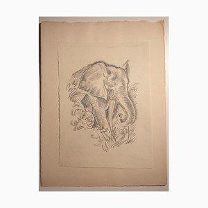 Emmanuel Gondouin, Africa, the Elephant, Original Lithographie, 1930er