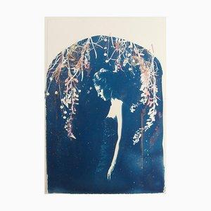 Lyra, Rosie Emerson, Cyanotype dipinto a mano su carta, 2015