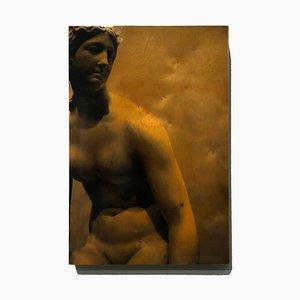 Persephone, Mixed Media Fotografie auf Holz, Hochglanz, 2010