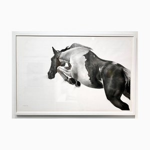 Cornice Patsy McArthur, the Great Escape, Charcoal on Paper, White Box Frame, 2018