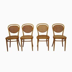 No. 81 Stühle von Thonet, 1980er, 4er Set