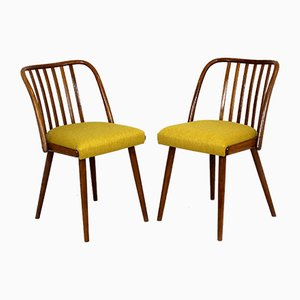 Dining Chairs by Antonin Suman, 1960s, Set of 2