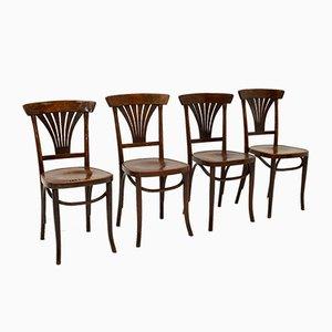 Antike Bugholz Esszimmerstühle, 4er Set