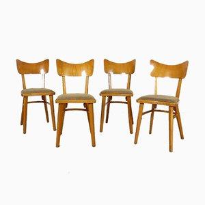 Chaises de Salon de Cesky Nabytek, Set de 4