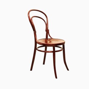 Beech Bentwood Chair, 1900