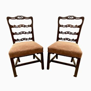 Antique Georgian Mahogany Show Chairs, Set of 2