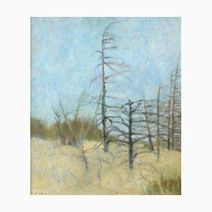 Paysage de Maria Prokop a Silent, 2001