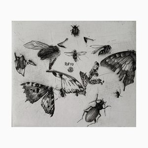 Krzysztof Skórczewski, Insectes Rural Sketches, 2011