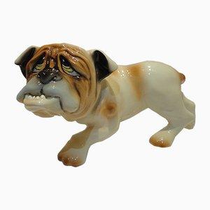 Englische Keramik Bulldogge, 1970er