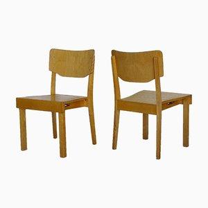 Massive Stühle aus Birke von Osakeyhtiö Koulukalusto Salo, Finland, 1950, 2er Set