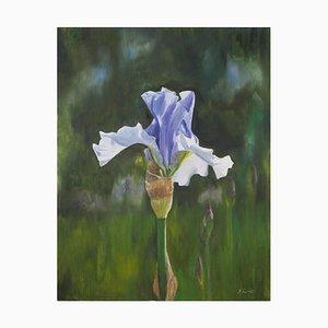 Spetchley Blue Iris, Still Life Oil