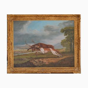 Hound Coursing a Stag by Jonathan Adams, 2011