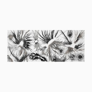 Exploflora Series No.28, 2017