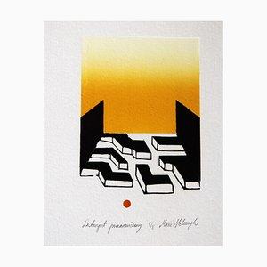 Maria Stelmaszczyk, Orange Labyrinth, 2009