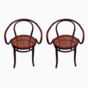 No. 209 Le Corbusier Armchair by Michael Thonet for Thonet, 1920, Set of 2
