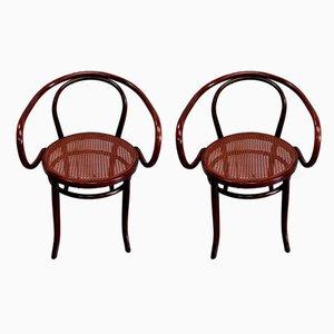 Nr. 209 Le Corbusier Sessel von Michael Thonet für Thonet, 1920, 2er Set