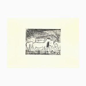 Nazareno Gattamelata, Pferde in der Koppel, Original Radierung auf Papier, 1985