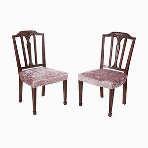 Mahogany Hepplewhite Style Side Chairs, 1890s, Set of 2