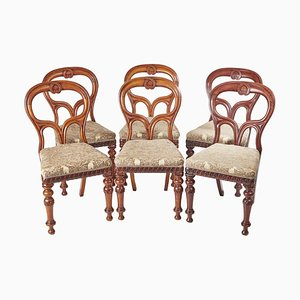 Mahogany Balloon Back Chairs, 1860s, Set of 6
