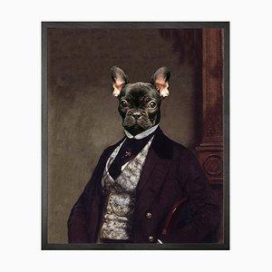 Französische Bulldogge Leinwand