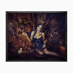 Bluejay Mini Framed Printed Canvas