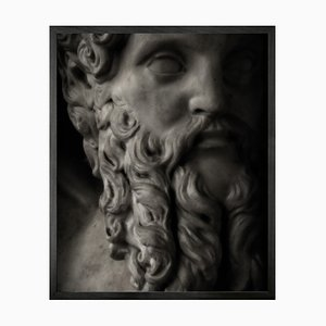 Small Statuesque 10 Framed Printed Canvas