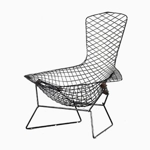 Bird Chair by Harry Bertoia for Knoll International, USA, 1950s