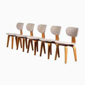 SB03 Dining Chairs by Cees Braakman for Pastoe, Netherlands, 1950s, Set of 5