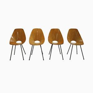 Italienische Medea Stühle von Vittorio Nobili, 1950er, 4er Set