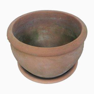 Vase en Terracotta de Terracino, Italie, 1960s