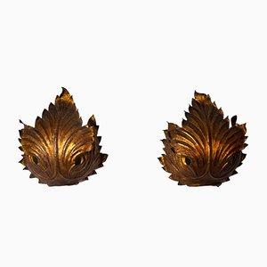 Wandleuchten mit Vergoldeten Blättern, Italien, 2er Set